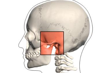 Disturbi a carico dell'articolazione temporo-mandibolare, ATM, bruxismo.jpg