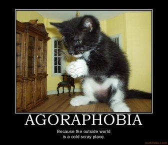 agorafobia.jpg