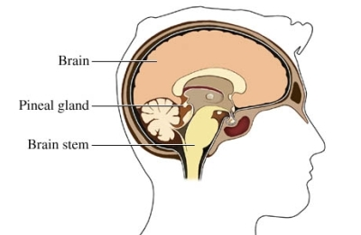 Distimia : sintomi, cause, complicazioni, cure e sostegno