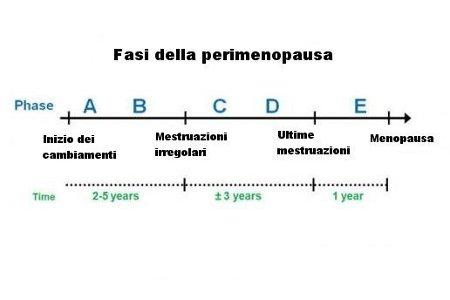 fasi della perimenopausa.jpg