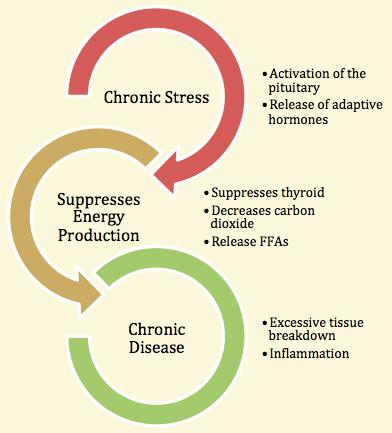 schema dello stress.png