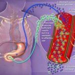Diabete: sintomi, cause e cure