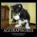 Agorafobia : un problema grave che va compreso