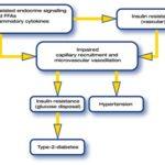 La sindrome metabolica: sintomi, segni, cause e cure