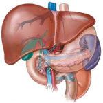 Insufficienza epatica acuta: prevenzione, sintomi e cure