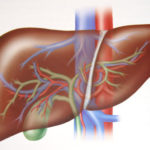 Problemi al fegato : sintomi, cause, cure e prevenzione