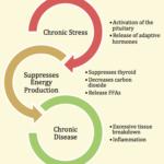Gestione dello stress : analisi  e rimedi