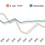 Salmonella : cure, cause e sintomi