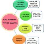 Diabete di tipo 3: cosa è importante sapere